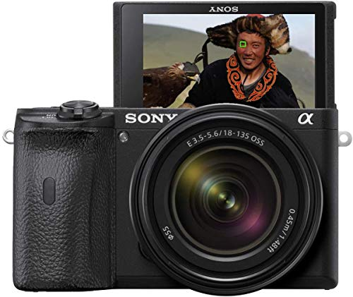 Sony Alpha 6600 E-Mount Systemkamera (24 Megapixel, 4K Video, längere Akkulaufzeit, opt....
