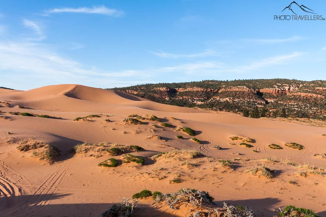Berge Coral Pink Sand Dunes