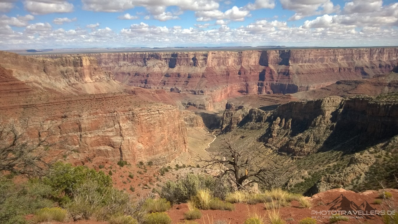 Blick in den Grand Canyon