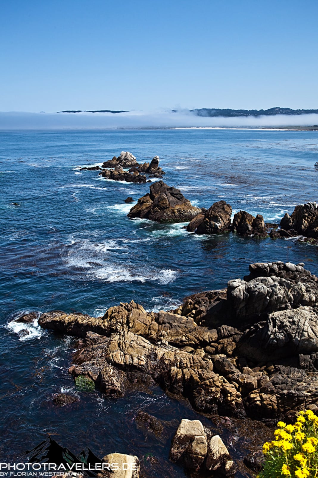 Point Lobos State Park3