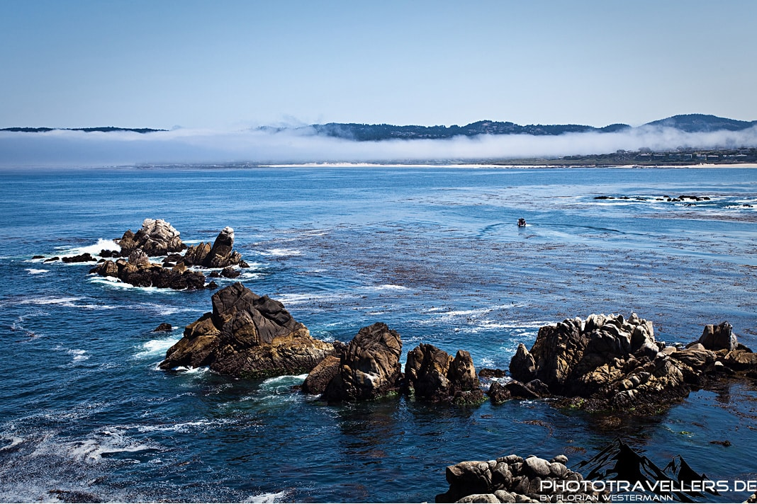 Point Lobos State Park4