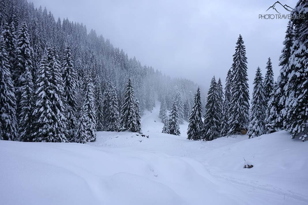 Winterlandschaft Laber