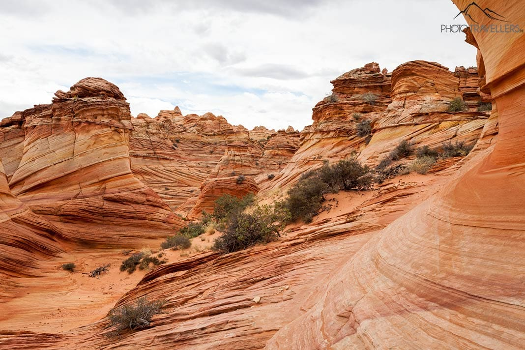 Die Coyote Buttes South