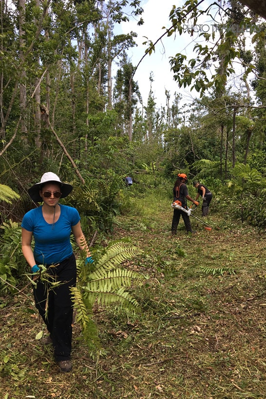Biggi bei der Waldarbeit