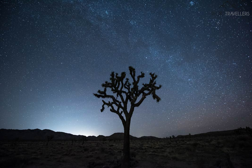 Joshua Tree Nationalpark bei Nacht