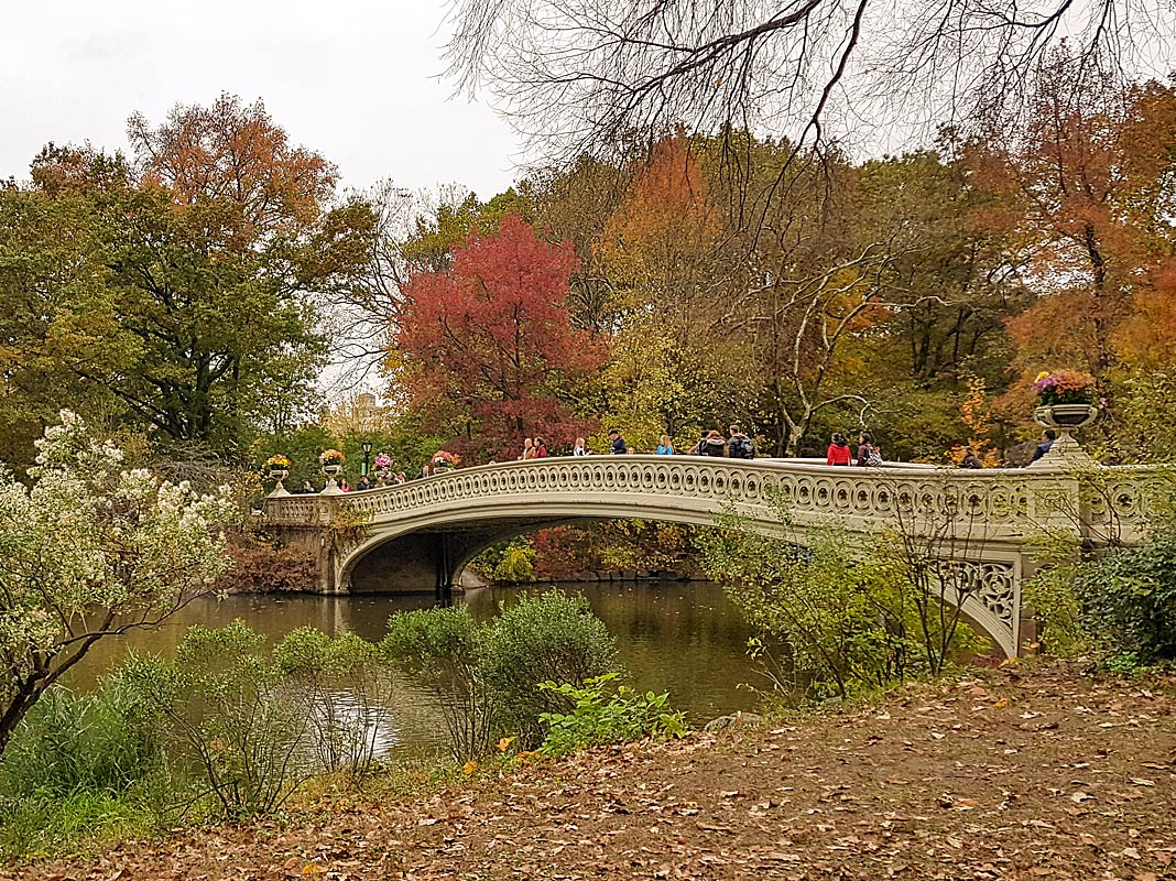 Top-Sehenswürdigkeit: Central Park in New York