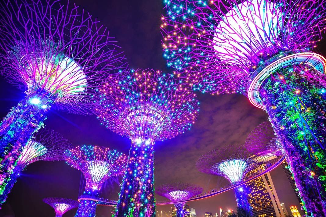 Die Supertrees in den Gardens by the Bay