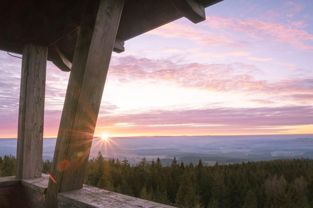 Der Ausblick vom Oberpfalz Turm im Naturpark Steinwald